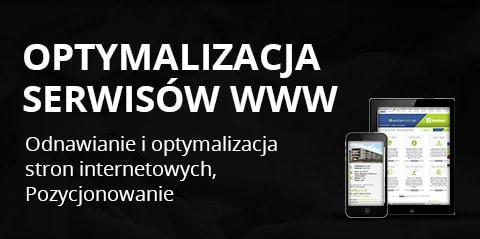 Pozycjonowanie stron internetowych i serwisów www.
